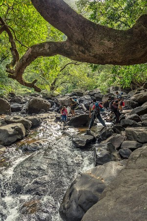 Water stream of Dudhsagar Water Falls