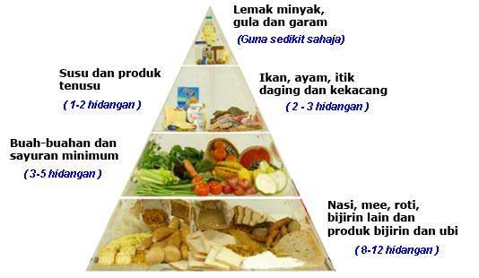 Piramid Makanan Nutrisi Seimbang