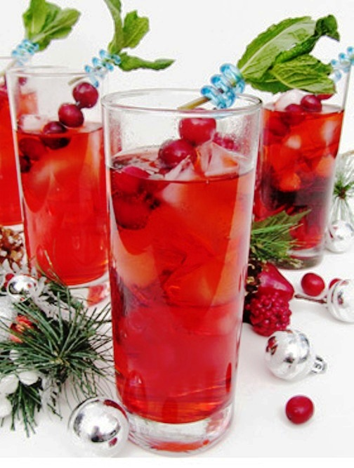 The Bestest Recipes Online: Cranberry Gin Fizz
