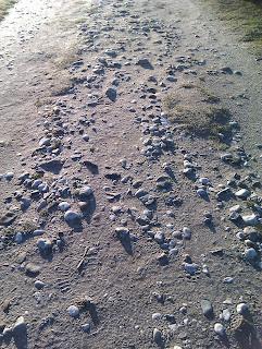 Sandweg mit Steinen zeigen die Sichtweise