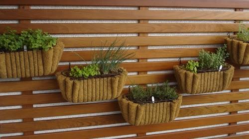 mini jardim de temperos : mini jardim de temperos:Jardineiras em fibra de coco também podem ser utilizados com muito