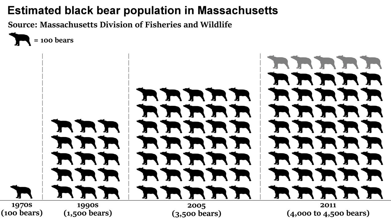 Terrierman39s Daily Dose Black Bear Populations Continue
