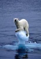 climate%2Bchange3-images.jpg