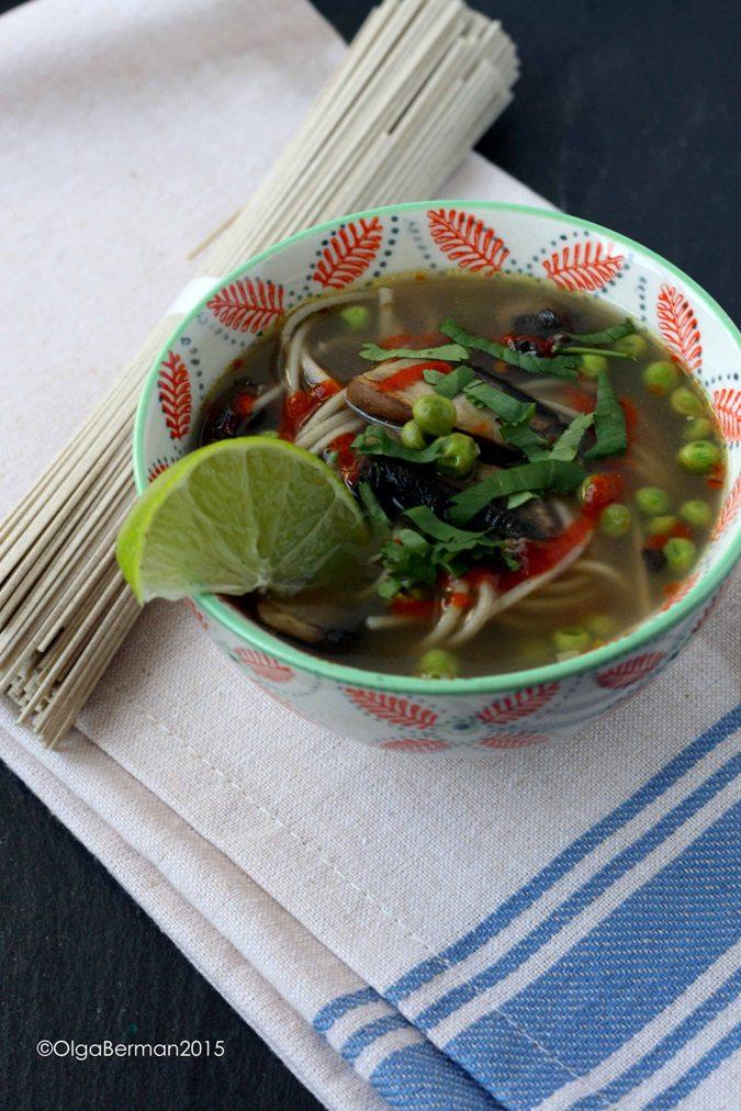 15 Minute Soba Noodle Soup Recipes — Dishmaps