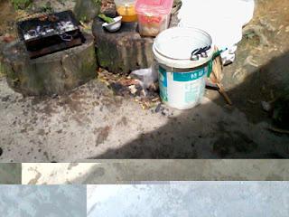 tempat bakaran kat tunggul, ikan dan ayam percik