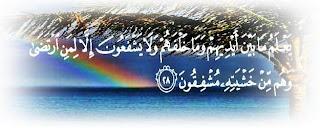 Kitab Shahih At Tirmidzi