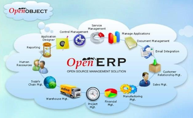 Image result for ERP Characteristics