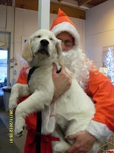 Lumimiesten suojelija Joulupukki toivottaa kaikille oikein hyvää valkoista lumenaikaa ja joulua