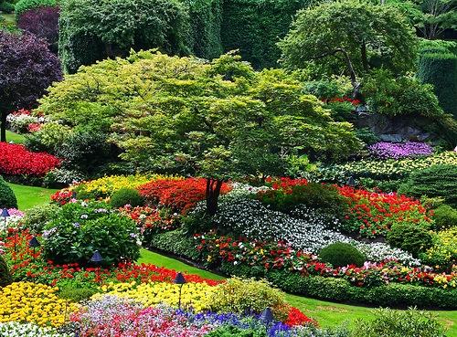 Dise o de jardines orograf a de la parcela for Diseno de jardines en parcelas