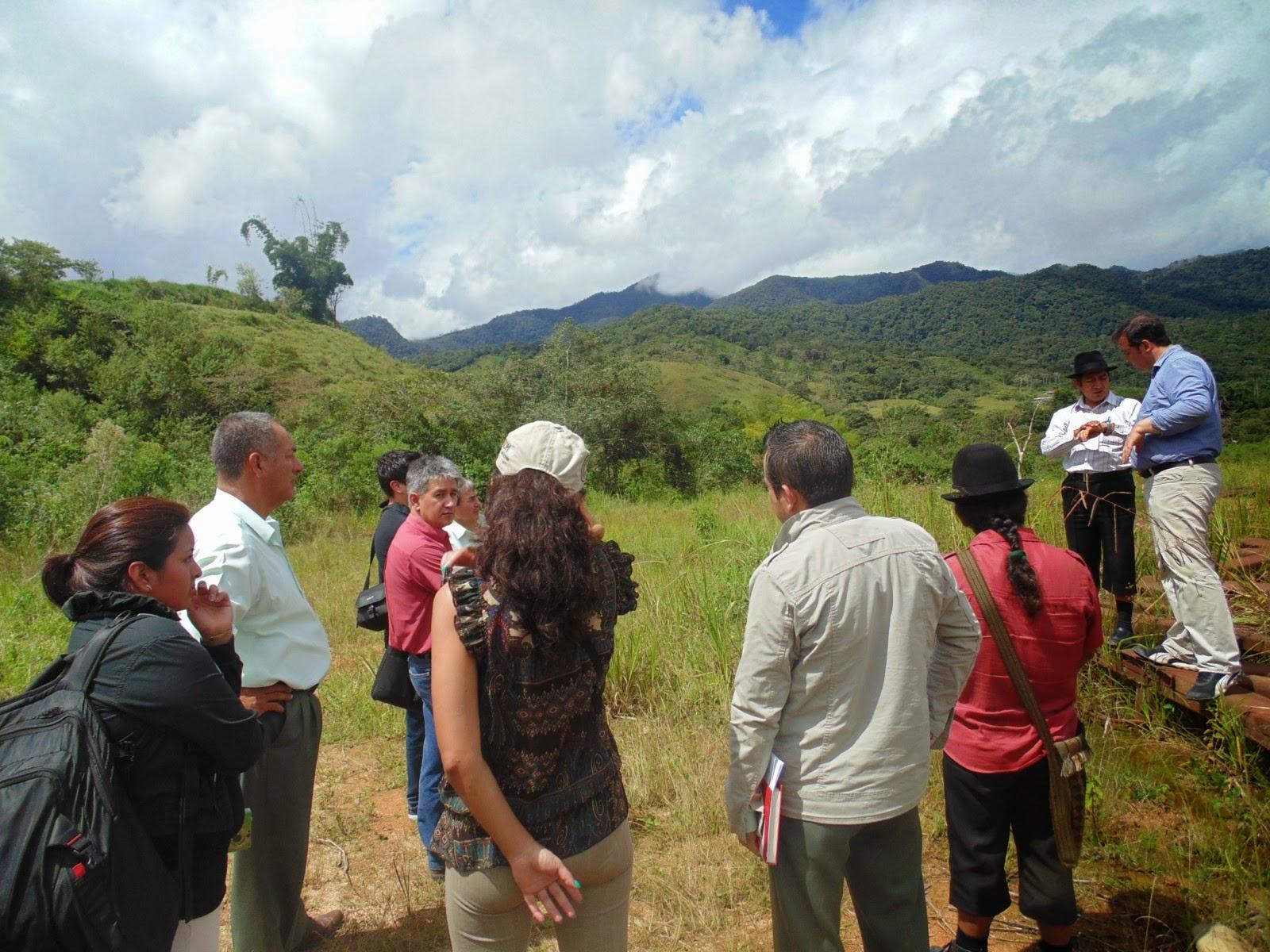 Zamora chinchipe prefectura apoya macro proyecto de for Viveros en zamora