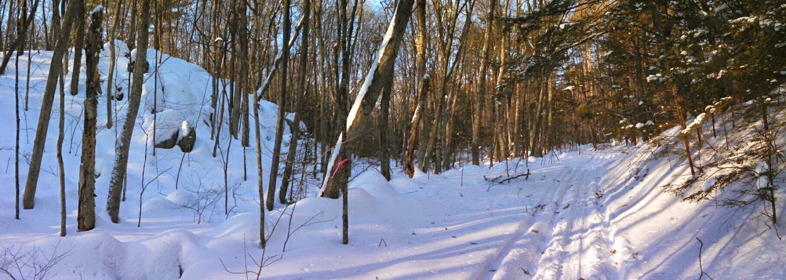 The Henhawk Trail in winter (photo by Ben Kimball)
