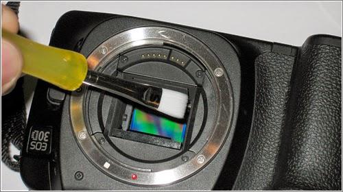 ما المهم في مستشعر كاميرا ريفلكس؟