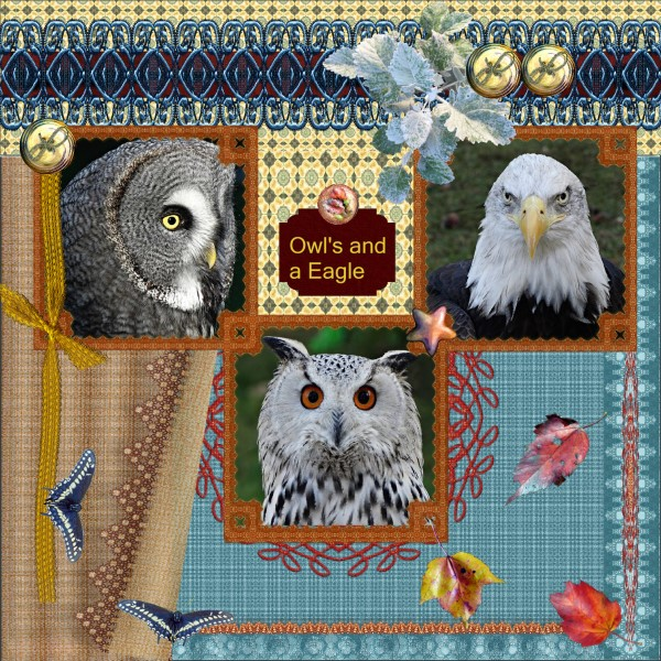 -Oct. 2016 - Owl's and Eagle