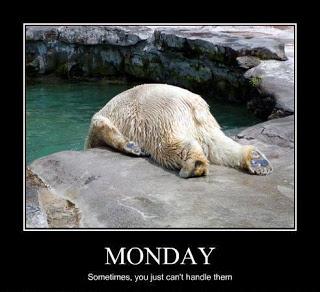 Monday-Polar-Bear.jpg