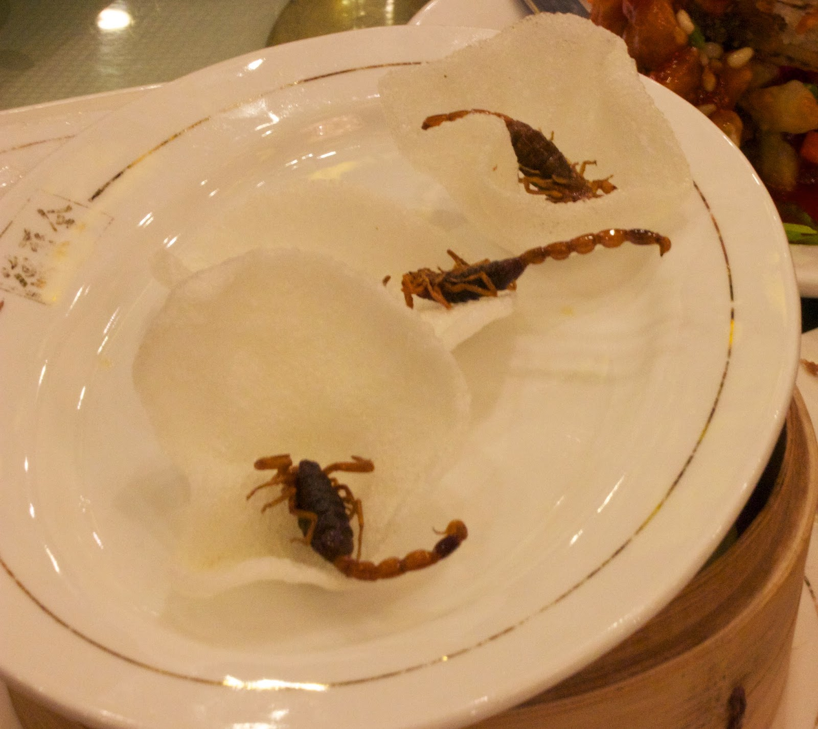 scorpion in Beijing