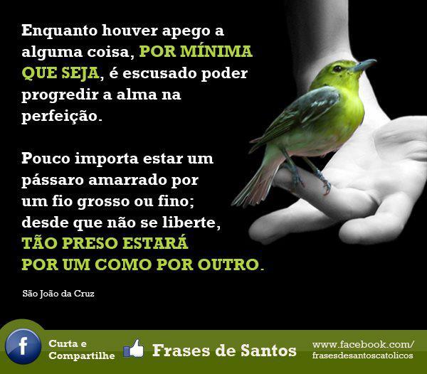 Perseverantes Do Espírito Santo Frases De Santos O