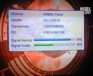 channel animal planet params tvchannel channelid