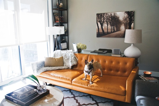 Ooooh This Dark Tangerine Sofa Looks Lovely With Pops Of Light And Hot Pink