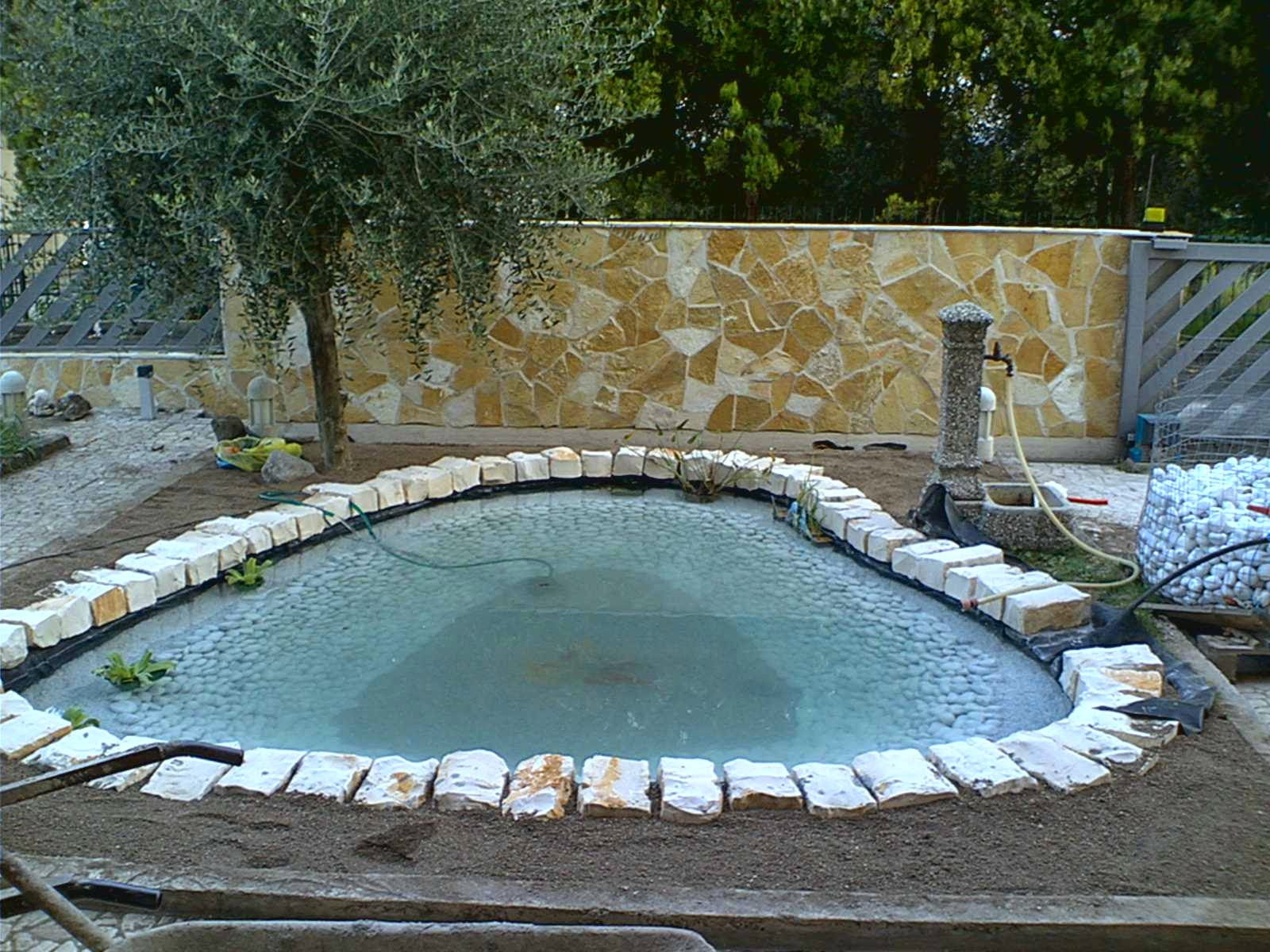 laghetto la costruzione di un giardino acquatico