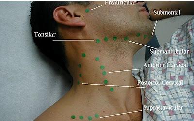 Ejercicio de firmeza para el cuello