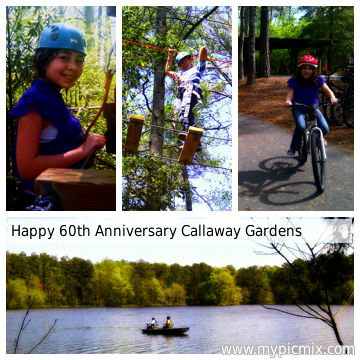 Bluebird Travels Callaway Gardens Treetop Adventure The