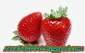 حمل مجاناً كتيب-تداول ثمار الفراولة الطازجة للتسويق