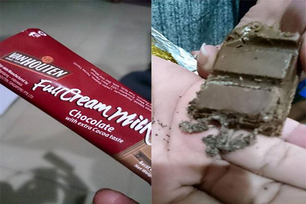 Coklat Van Houten Isi Ulat