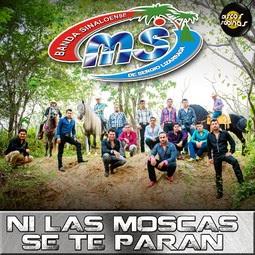 Banda MS - Ni Las Moscas Se Te Paran