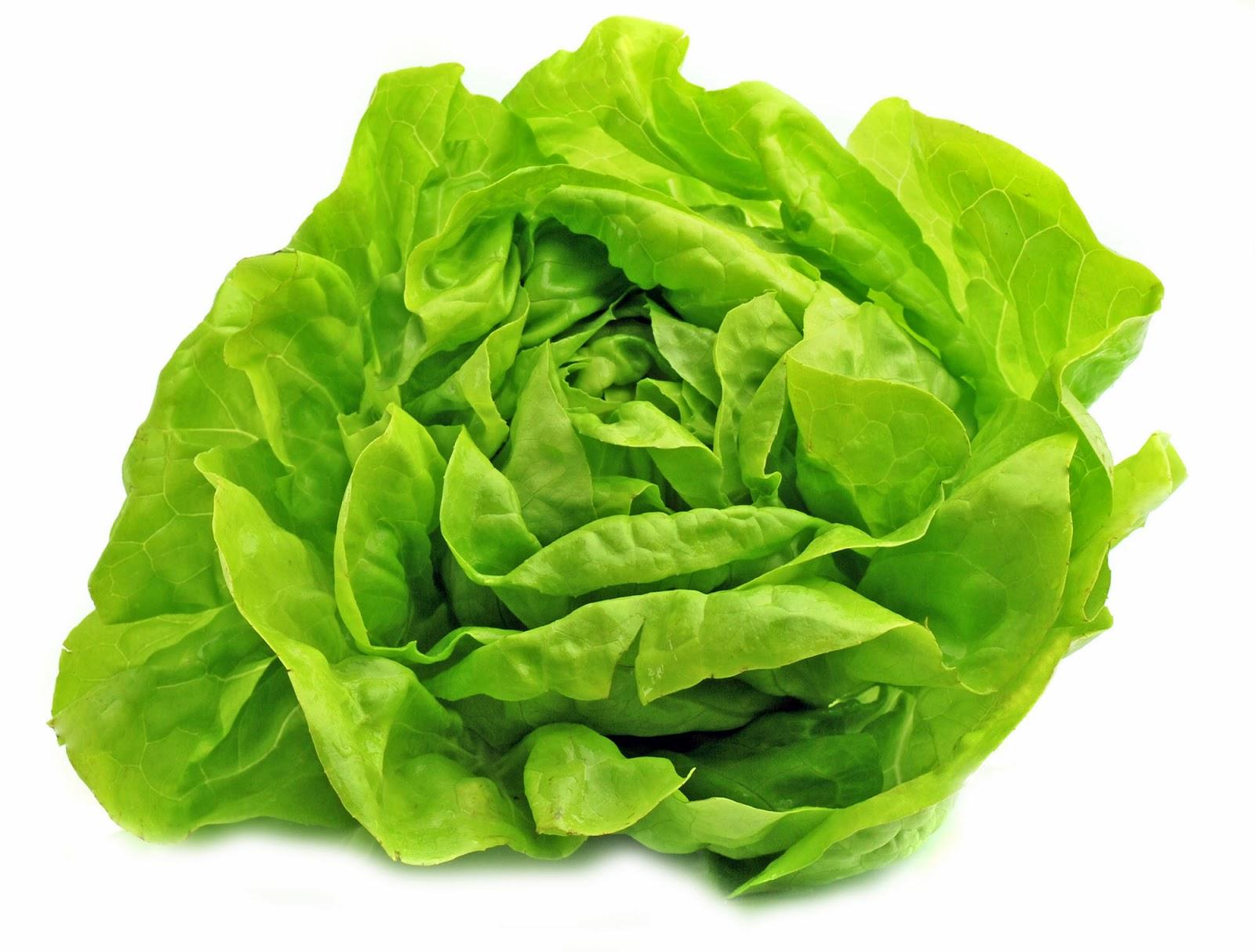 Veggie Le Crunch Recipes — Dishmaps