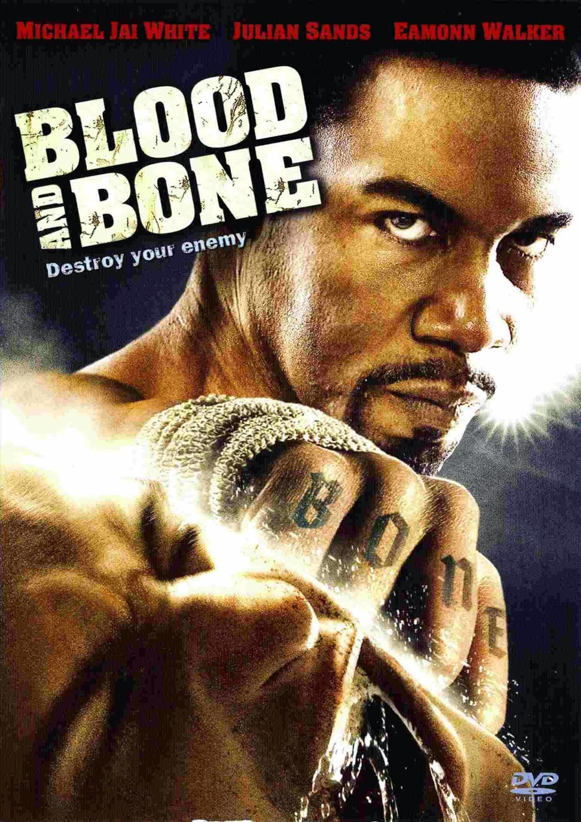 Blood and Bone (2009) tainies online oipeirates