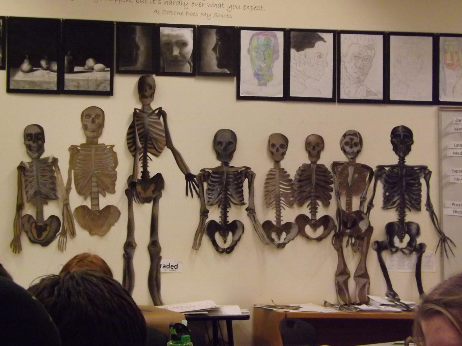 Kevin Wasden: Anatomy for Artists: Skeleton Update