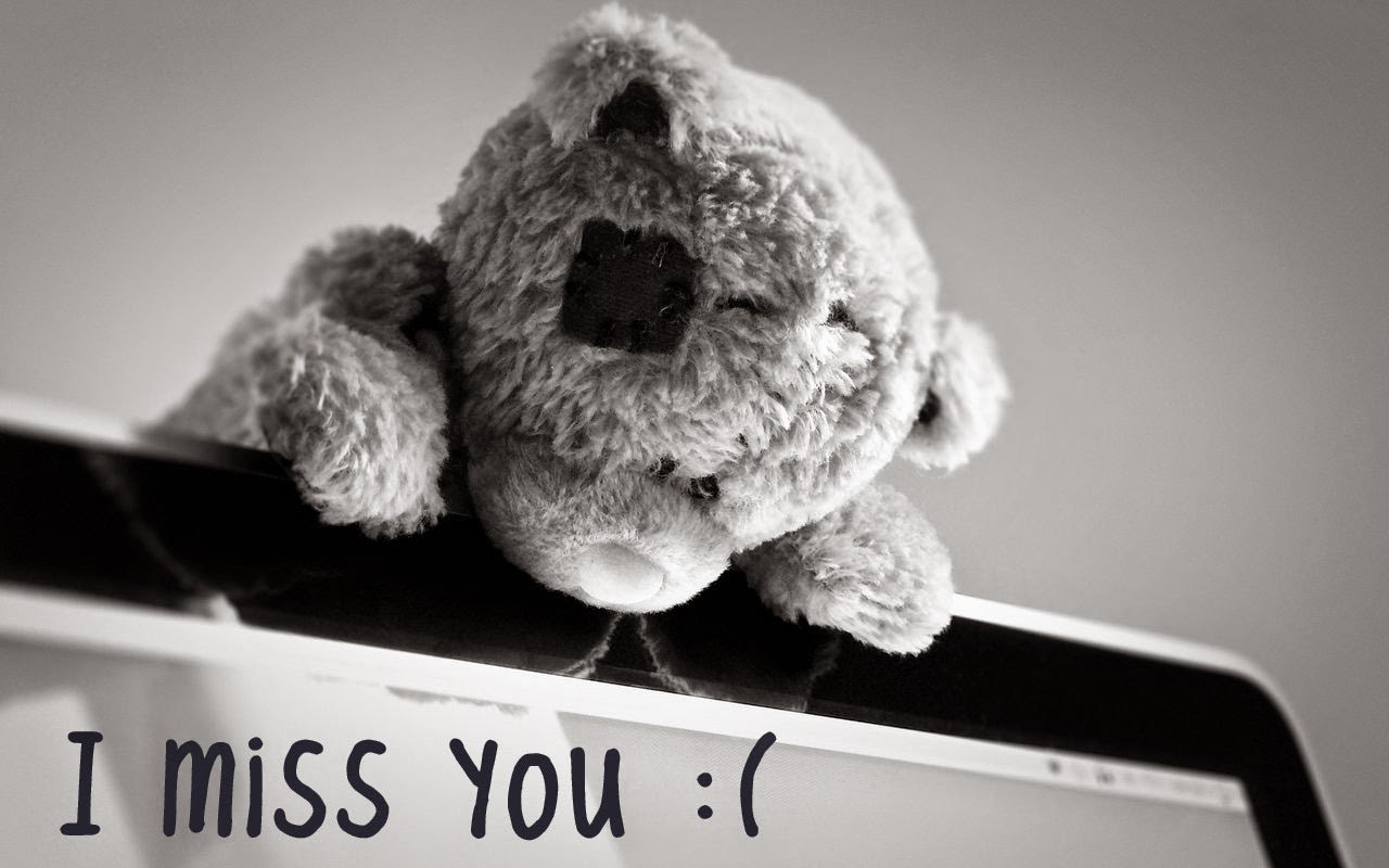 I Miss You Lovely Teddy Bear HD Wallpaper