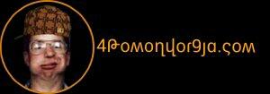 4pomonyor9ja.com