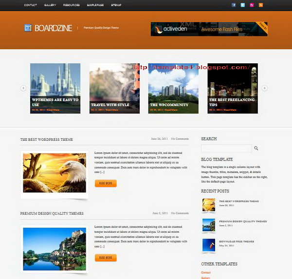BoardZine WordPress Theme