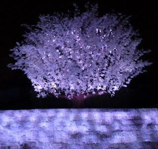 Wallpaper HD Lights