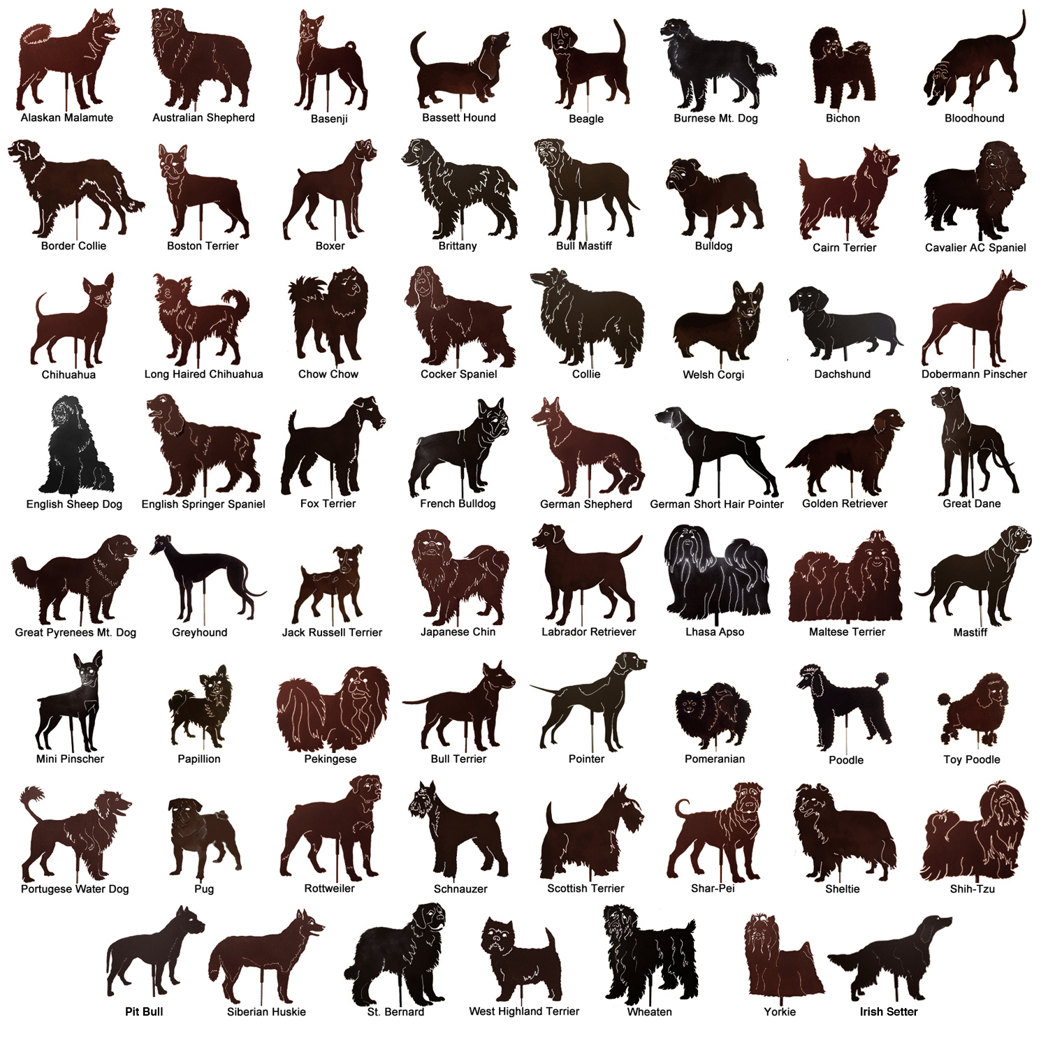 Dog Breeds A-Z With Pictures
