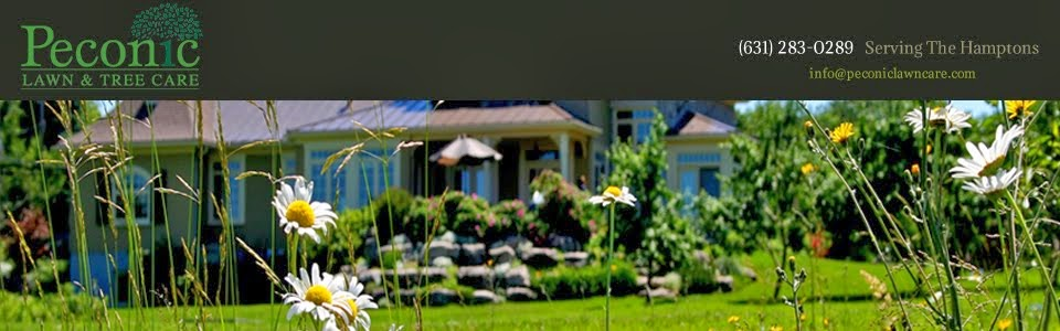 Peconic Lawn Care