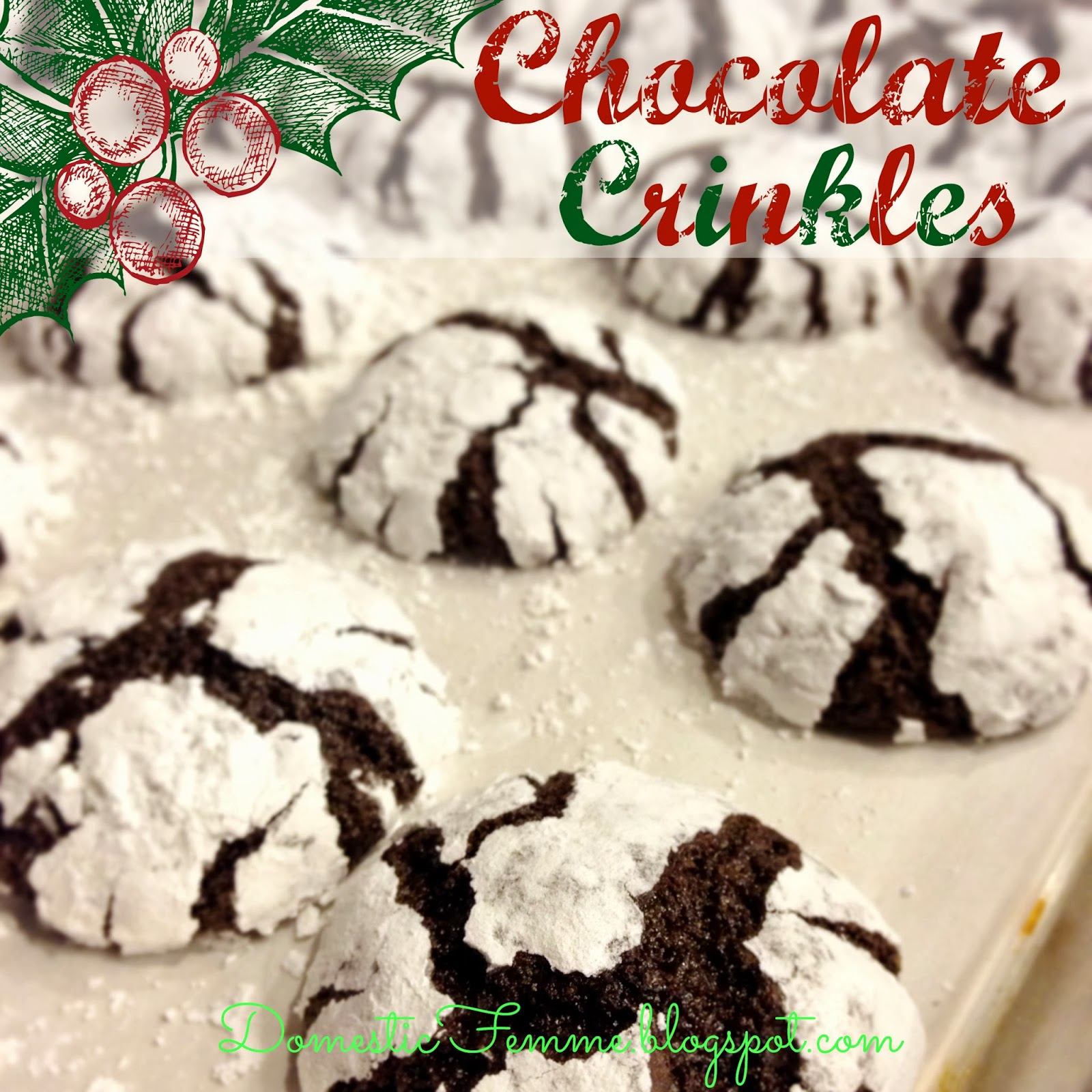 Domestic Femme: Cookie Perfection: Chocolate Crinkles