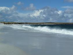 Surf Bay, Stanley