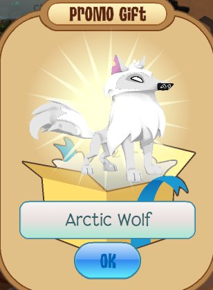 arctic wolf as you may see this is my arctic