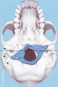 položaj atlasa