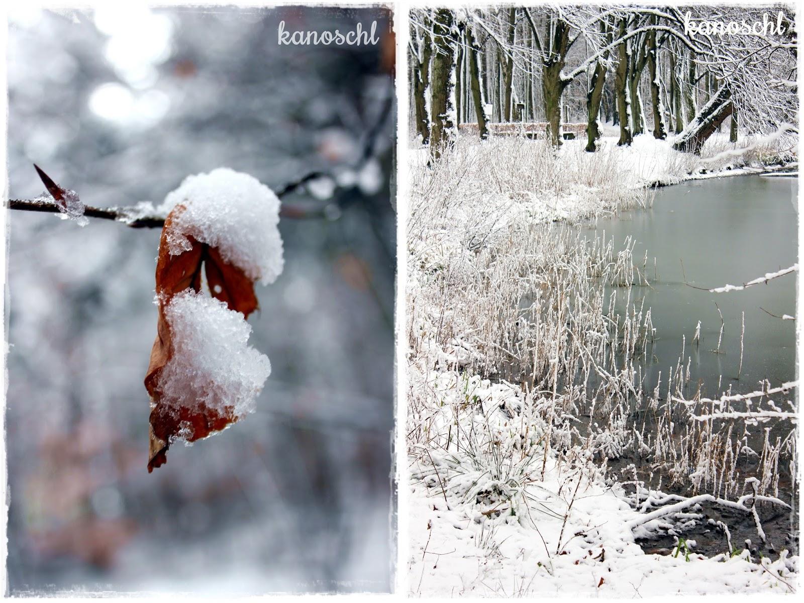 winterwonderland, Winter, Spaziergang im Schnee