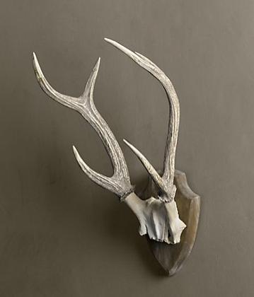 Spicer bank by allison egan design dedication antlers for Ghost antler coat rack