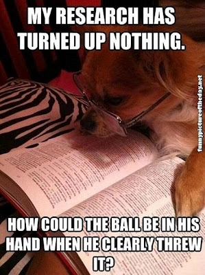 How Could Ball Be In His Hand Funny Dog Looking At Book With Glasses