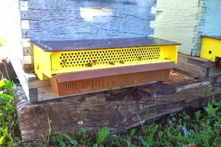 A Pollen Trap On The Front Of Honey Bee Hive