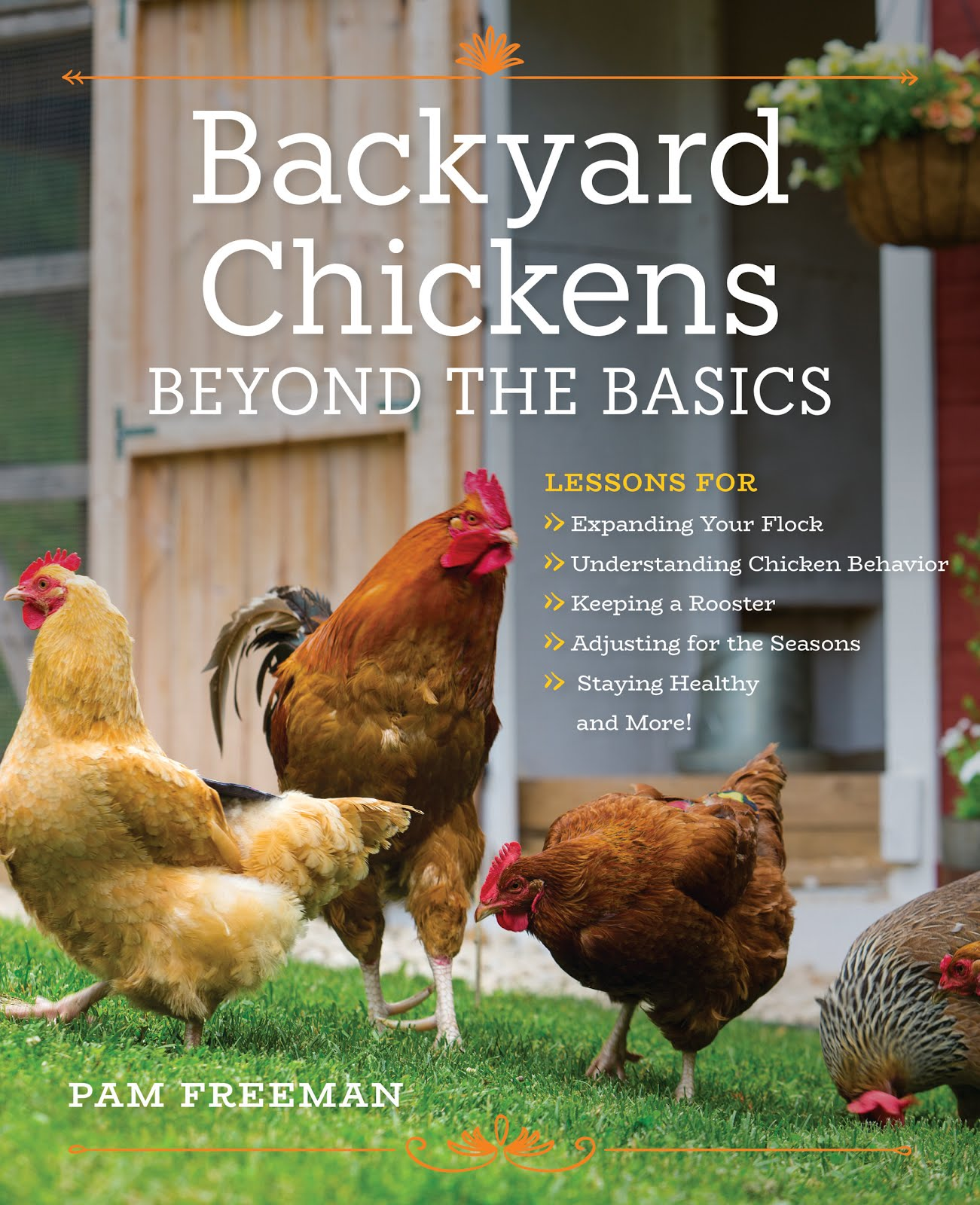 pam u0027s backyard chickens chickens in a minute videos