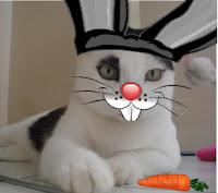 Gata Malu fantasiada de coelho da páscoa