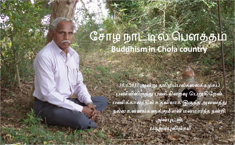 சோழ நாட்டில் பௌத்தம்