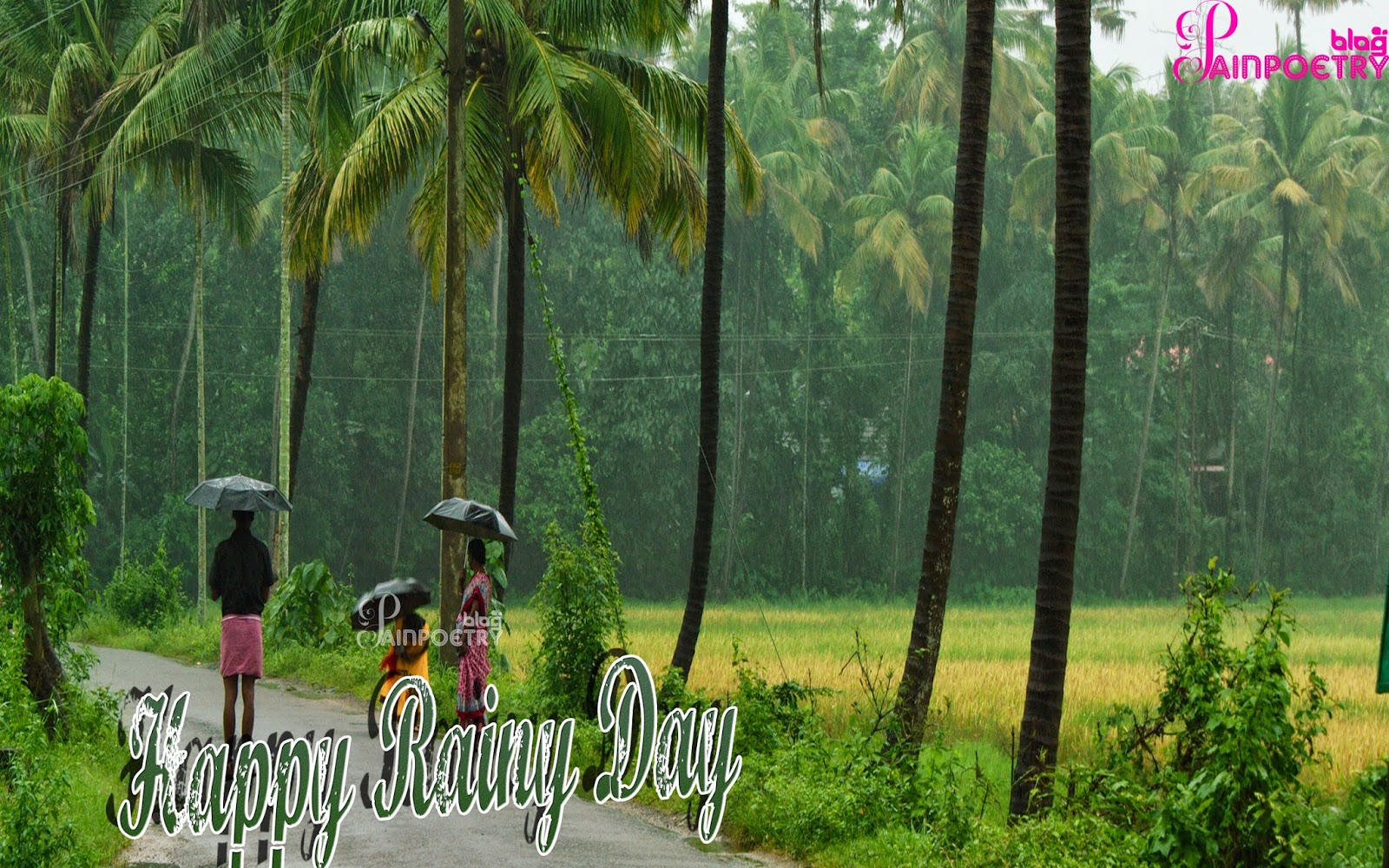 rainy day hd images free download