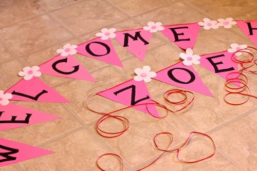 Welcome Home Zoe